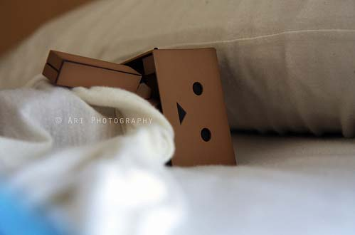 Danbo Wallpaper on Triste Danbo    Danbo1